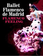 Ballet Flamenco de Madrid - Flamenco Feeling