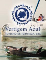 Observação de Golfinhos + com transfer de Lisboa/Cascais 2016
