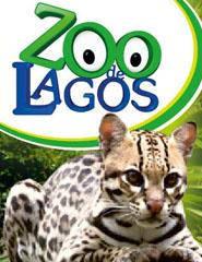 Visita ao Zoo de Lagos 2016
