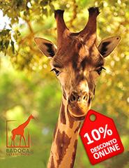 Visita Badoca Safari Park 2016