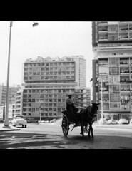 Foco no Arquivo   Cabo Verde de Relance + Para um Álbum de Lisboa +