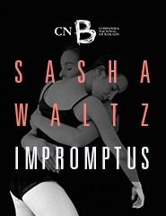 SASHA WALTZ - Impromptus