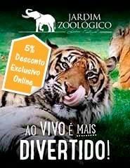 Visita Jardim Zoológico 2019