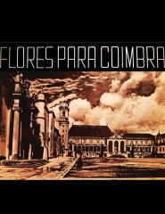 Flores para Coimbra