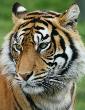 Visita Jardim Zoológico Lisboa 2014