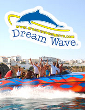 Dream Wave 2015 - Ocean Rocket