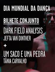 Dark Field Analysis/Um Saco e uma Pedra
