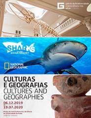 Galeria + Sharks + Culturas e Geografias