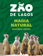 Visita Zoo de Lagos