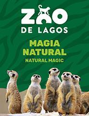 Voucher Presente - Zoo de Lagos