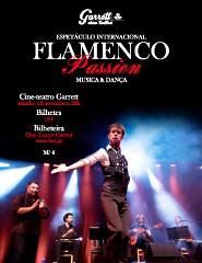 Flamenco Passion - Musica & Dança