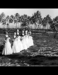 A Experiência Afro-Brasileira na Tela | Barravento