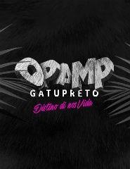 OPAMP (entrada até 2h00)
