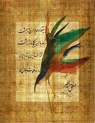 Voz dos Pássaros