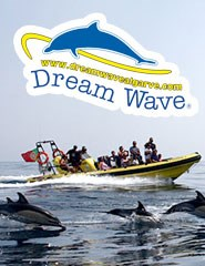 Dream Wave 2017 - Insónia – Grutas e Golfinhos