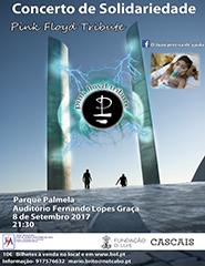 Pink Floyd Tribute  -  Concerto Solidario