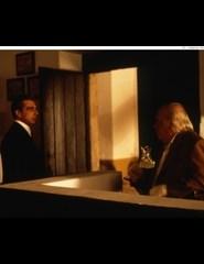 Luis Miguel Cintra: O Cinema | Peixe Lua
