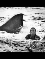O Medo | Jaws
