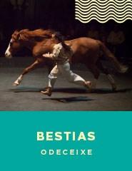 BESTIAS Campo da Bola Malhadais Teatro   Arte Novo Circo Mais Info Inscrever fd73c951ca9