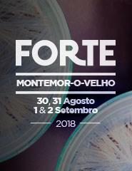 Festival Forte 2018 - Bilhete Diário