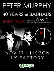 Peter Murphy - 40 Years of Bauhaus featuring David J
