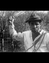 In Memoriam - Nelson Pereira dos Santos | Vidas Secas