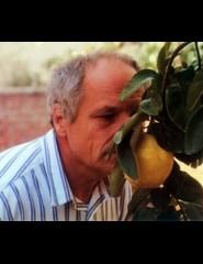 70 Anos de Cinemateca | El Sol del Membrillo