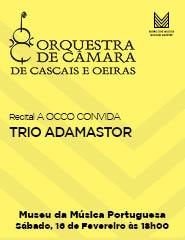 A OCCO Convida - TRIO ADAMASTOR