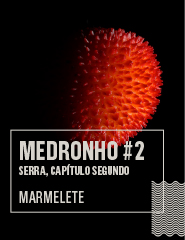 MEDRONHO #2 - SERRA, Capítulo Segundo