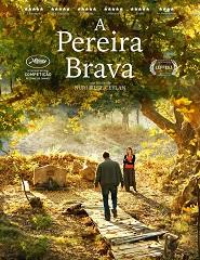 Cinema | A PEREIRA BRAVA
