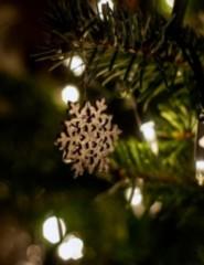 A Estrela de Natal | Primeiras Descobertas