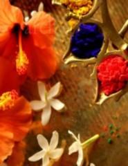 Momentos Indianos: Saris, Pinturas Mehendi e Chai| Workshop