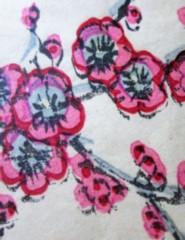 Sakura- A Flor Princesa| Sábados em Família