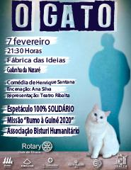 O Gato - Organização Rotary Club de Ílhavo