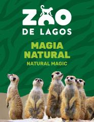 Visita o Zoo de Lagos 2020