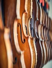 Violinos para Adultos | Aulas Presenciais e Online
