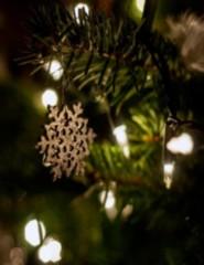 A Estrela de Natal| Primeiras Descobertas