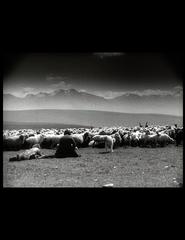 Doclisboa | Buba + Marili Svanets / Djim Chvante