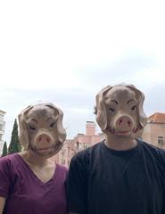 A QUINTA DOS ANIMAIS_Famílias