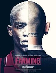 Farming # 13h