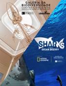 Galeria da Biodiversidade+Sharks
