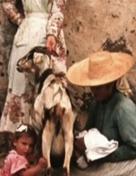 De los nombres de las cabras — IndieLisboa 2019